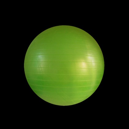 DYNAMICS FITNESS BALL