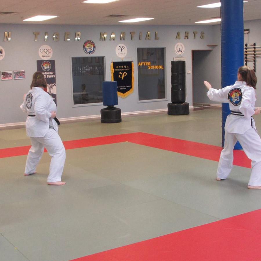 The Official Distributor Of Adidas Judo Grappling Mat