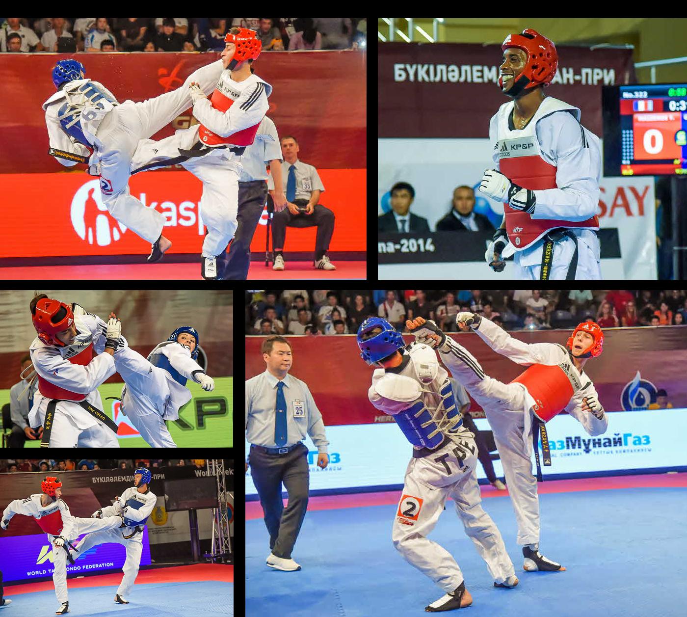 Taekwondo, Karate, Judo, Jiu-jitsu, MMA