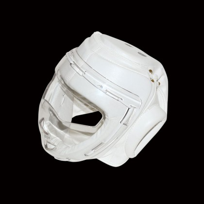 DYNAMICS HEAD GEAR WITH CLEAR FACE MASK